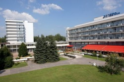Medical therapy in health spa Piestany hotel Splendid